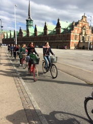 Bicycles rule the city