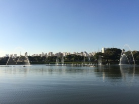 The Ibirapuera Park, designed by Oscar Niemeyer and inaugurated in 1954, was built over a swamp land (Ibirapuera means 'rotten tree' in Tupi, an ancient indigenous language)