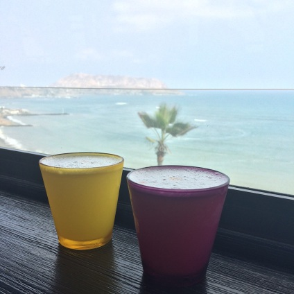 """There's a rivalry between Chile and Peru regarding the """"true ownership"""" of the pisco sour: having tried both we can safely say that there's a well deserved tie!"""