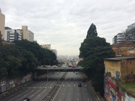 São Paulo is South America's largest city, with a population of 20+ million. Everywhere you look you'll see highways and skyscrapers