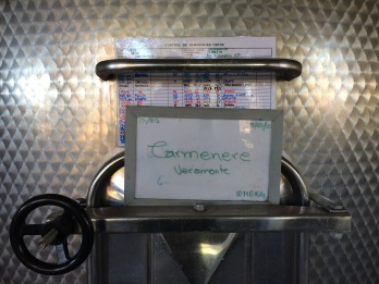 The Camenere grapes were originally French, but nowadays can only be found in Chile