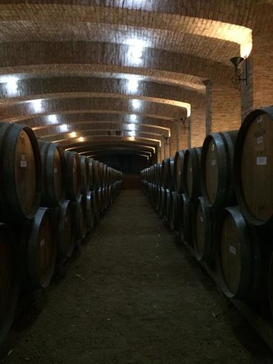 Viña Undurraga's cellar