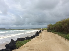 Great care was put into ensuring that trails in Galapagos alter the landscape as little as possible