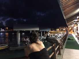 Jules checks out a pelican and a sea lion on Puerto Ayora's pier