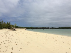 'Tortuga Bay' has two beachfronts: a rougher one, great for surfing, and this one, great for snorkeling