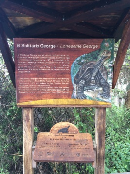 Lonesome George was unable to mate with other Galapagos turtles (despite valiant efforts) before it died in 2012, thus becoming the last member of its species