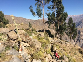 Jules arriving at the top of the Colca Canyon