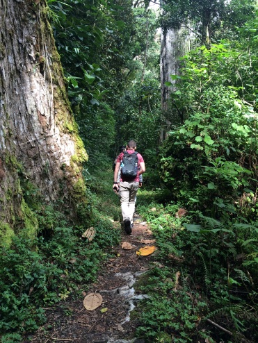 This trail was like a highway compared with what was waiting for us in Bocas del Toro