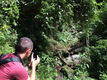 Verne tries to catch an elusive quetzal with his cameraphone, but no luck