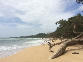 This was the first beach we arrived on our way to Red Frog. As you can see, it is another slice of paradise!