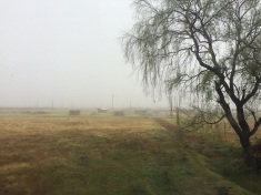 The train ride from Cusco to Aguas Calientes is spectacular: at the start, the fog hides the view...