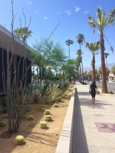 We spent a night in Palm Springs on our way to Vegas