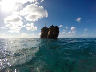 Verne swims to the Mai Tai wreck, a steamship that sunk in 1916