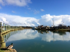 The marina at Whangarahi, a small town near the Northeastern coast