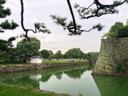 The moot surrounding the Nijo Castle