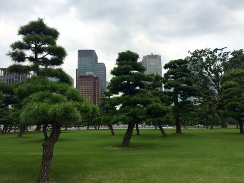 The Imperial Palace grounds are nested between skyscrapers