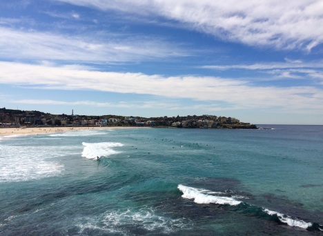 Bondi beach is a surfer's paradise (minus the occasional shark that breaks through the nets)
