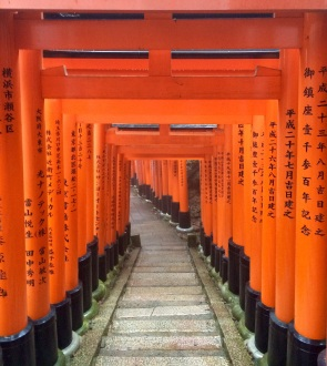 The thousand gates (torii) of the Fushimini Inari temple, one of the most iconic images of Japan