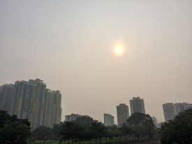 The haze caused by the Indonesian forest fires we saw in Malaysia was also hovering Singapore