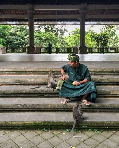 These two monkeys were surprisingly well behaved