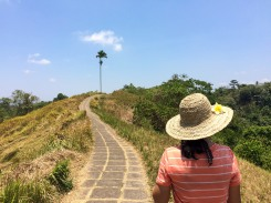 If you're in Ubud try the Campuhan Ridge Walk. It's a great hike that...