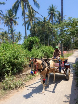 There are no motorised vehicles on the island, so all the transport is made on foot, by bicycle or by donkeys