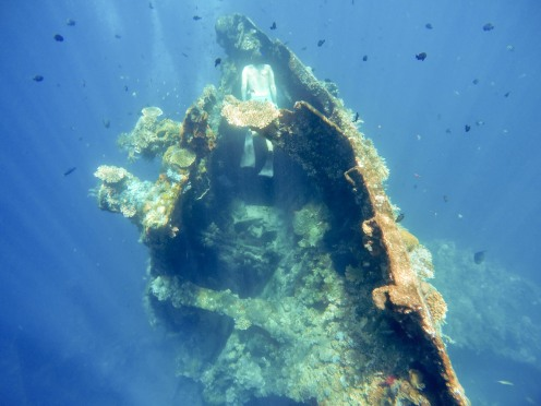 Verne looks for hidden treasures at the USAT Liberty wreck