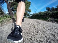 Running in Alentejo's plains (Ponte de Sor, Portugal)