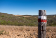 Trail markings near Vila do Bispo (16mm, 1/14400s, f2.2, ISO 200)
