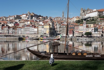 Porto, Portugal (35mm, 1/420s, f10, ISO 420)
