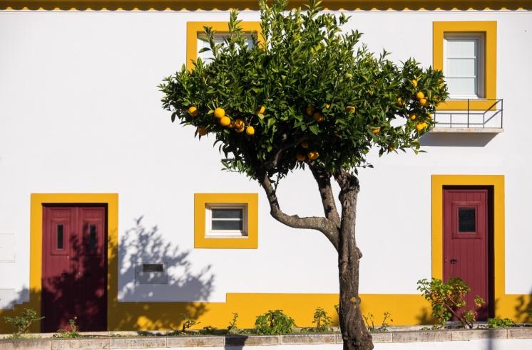 Vila Viçosa, Portugal (38mm, 1/2400s, f4.5, ISO 200)