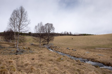 Near the Fossehuset sawmill, Norway (16mm, f10, 1/400s, ISO 200, PPL1-Corrected)