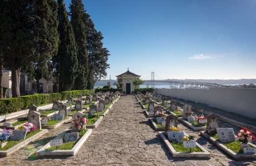View of the river from Prazeres Cemetery, Lisbon, Portugal (16mm, f16, 1/170s, ISO 200, PPL1-Corrected)