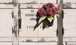 Prazeres Cemetery, Lisbon, Portugal (30mm, f11, 1/420s, ISO 200)