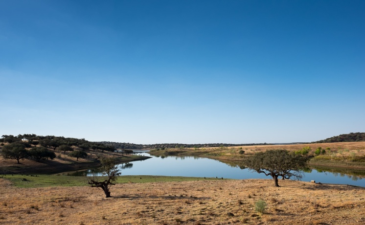 Lower Alentejo, Portugal (16mm, f8, 1/400s, ISO 200, PPL1-Corrected)