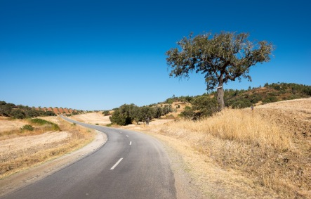 Lower Alentejo, Portugal (16mm, f9, 1/450s, ISO 200, PPL1-Corrected)