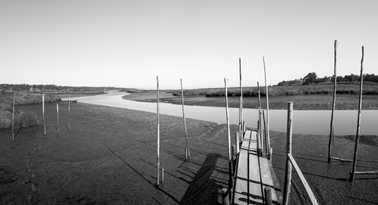 Comporta, Portugal (3-picture panorama, 16mm, f8, 1/400s, ISO 200, PPL2-Enhanced)