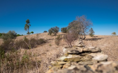 Near Balurcos, Algarve, Portugal (16mm, f1.4, 1/12800s, ISO 200, PPL1-Corrected)