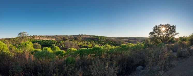 Near Furnazinhas, Algarve, Portugal (3-picture panorama, 16mm, f5.6, 1/320s, ISO 200, PPL2-Enhanced)