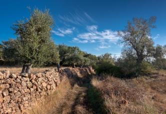 Near São Bartolomeu de Messines, Algarve, Portugal (16mm, f8, 1/350s, ISO 200, PPL1-Corrected)