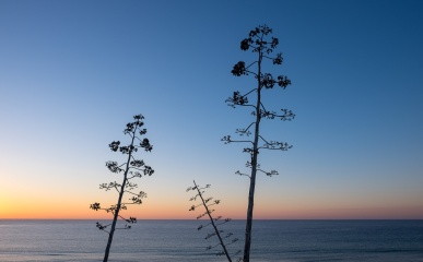 Sunrise at Sagres, Algarve, Portugal (16mm, f5.6, 1/300s, ISO 200, PPL1-Corrected)