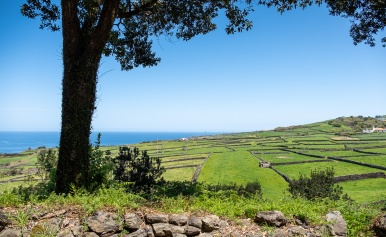 Terceira, Azores (18mm, f5.6, 1/800s, ISO 200, PPL3-Altered)