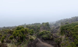 Pico mountain climb, Azores (18mm, f5.6, 1/320s, ISO 200, PPL1-Corrected)