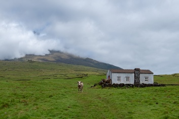 Pico, Azores (30mm, f5.6, 1/950s, ISO 200, PPL1-Corrected)