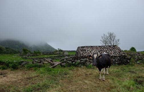 Fajãzinha, Flores, Azores (18mm, f5.6, 1/300s, ISO 200, PPL1-Corrected)