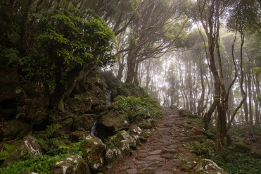 Path to Poço da Alagoinha, Flores, Azores (3-picture composite, 18mm, f4, 1/180s, ISO 200, PPL2-Enhanced)