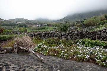 Fajãzinha, Flores, Azores (18mm, f5.6, 1/480s, ISO 200, PPL1-Corrected)