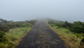 Lagoa Negra e Lagoa Comprida, Flores, Azores (18mm, f5.6, 1/350s, ISO 200, PPL1-Corrected)