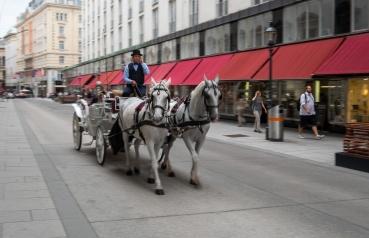 Vienna, Austria (24mm, f16 1/15s, ISO 200, PPL1-Corrected)