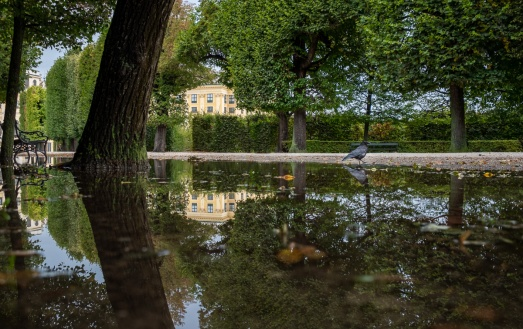 Schönbrunn Palace, Vienna, Austria (3-picture composite,24mm, f5.6, 1/550s, ISO 200, PPL3-Altered)